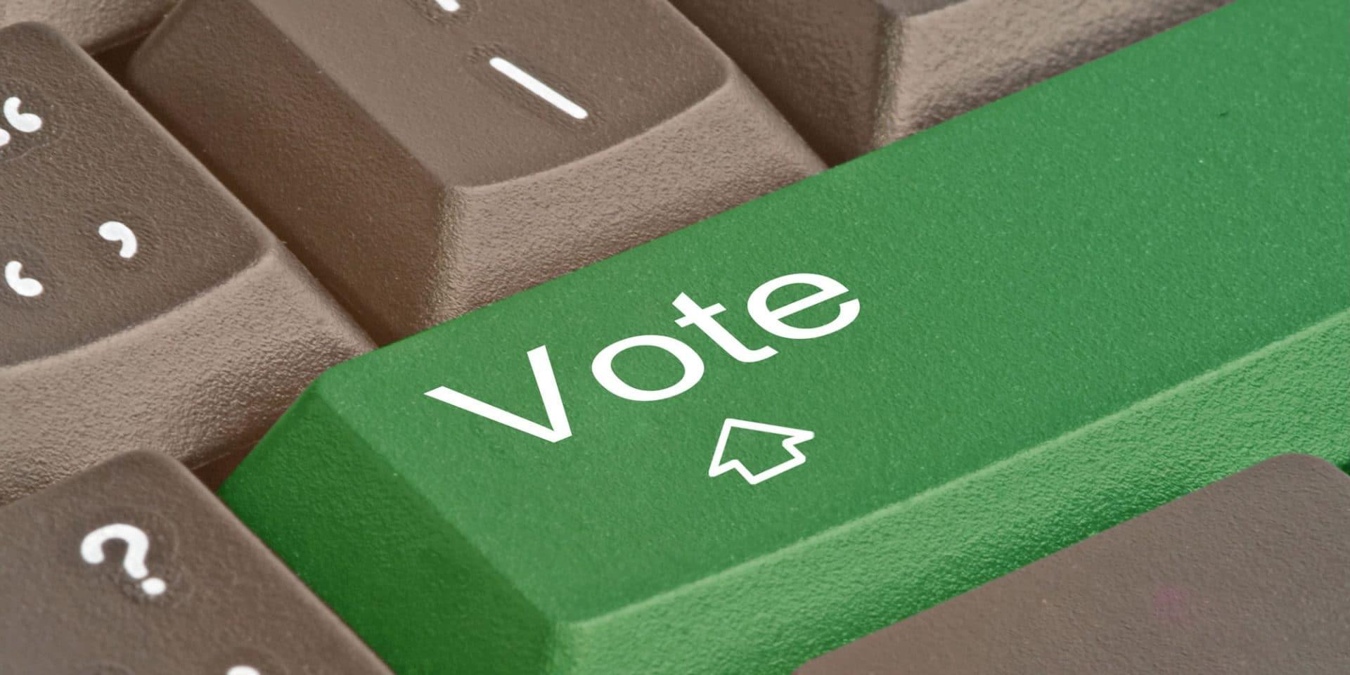 E-valg: Skaber langt flere problemer end det løser